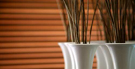 wooden-blinds-small